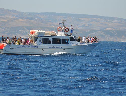 Bootausflug Str. von Gibraltar